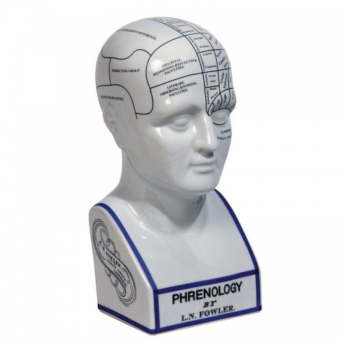 Phrenology Head - Architectural Replicas of historical buildings