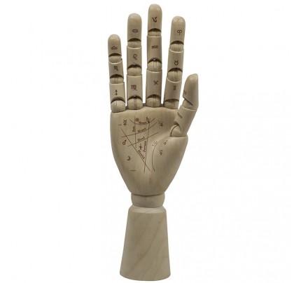 Palmist Hand Figurine - Hand Sculpture